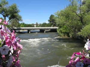 Baskets of flowers hanging on a walking bridge frame Reno's Truckee River.